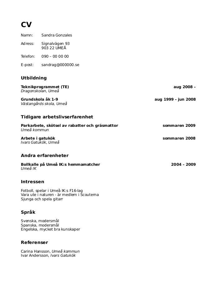 minimalistisk cv-mall i word-format